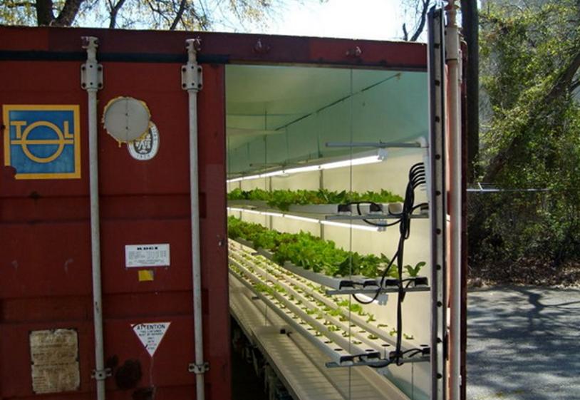 Shipping container Garden