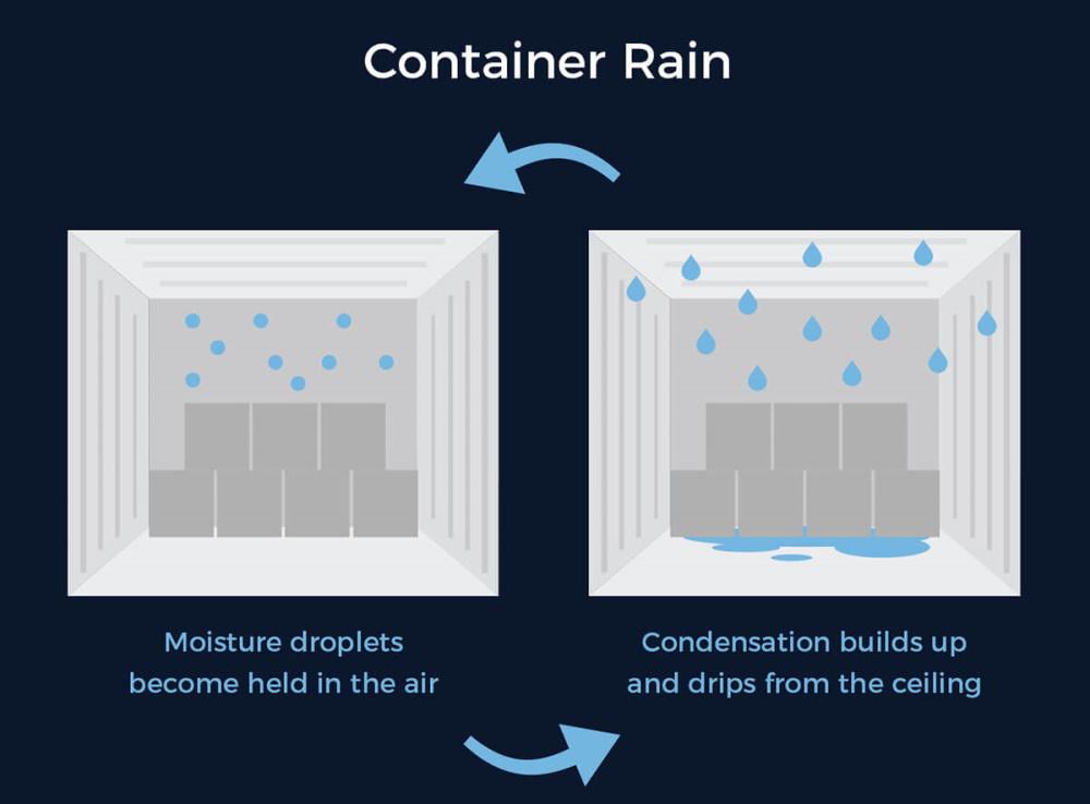 container rain